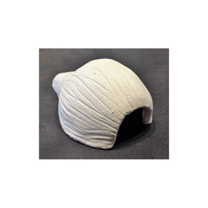 Muschelhöhle weiß 9,0 cm