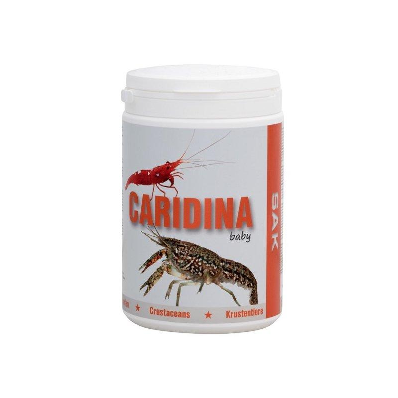 SAK Caridina excellent baby - 300 ml
