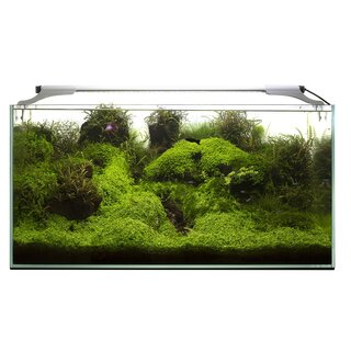 Aquael Leddy SLIM plant 36W   100-120cm